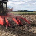 今年も無事小豆の収穫を終えました